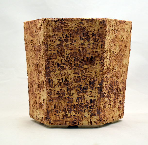Tall Hexagonal Pot - Limestone pattern