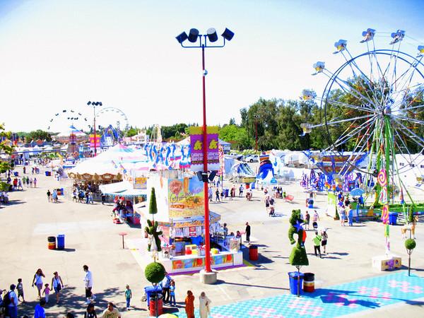 2009 California State Fair: Weird, Wild, & Wacky