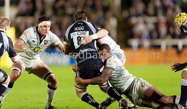 Newcastle Falcons vs Northampton Saints, Aviva Premiership, Kingston Park, 15 April 2011