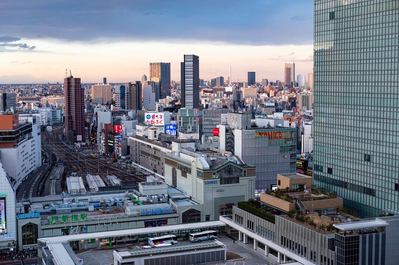 Tokyo -9863.jpg