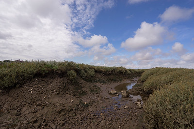Blakeney Nature Reserve, Norfolk