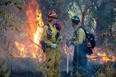 Chatfield Wildland Fire