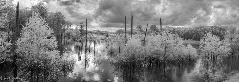 Dead Lakes, Wewahithka, FL