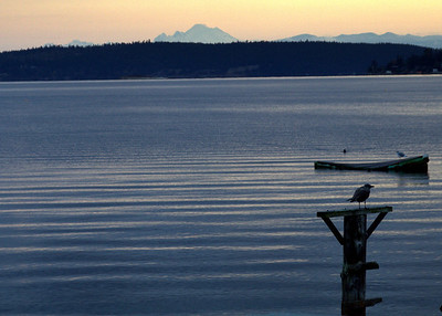 Whidbey Island 2013 Vol 2