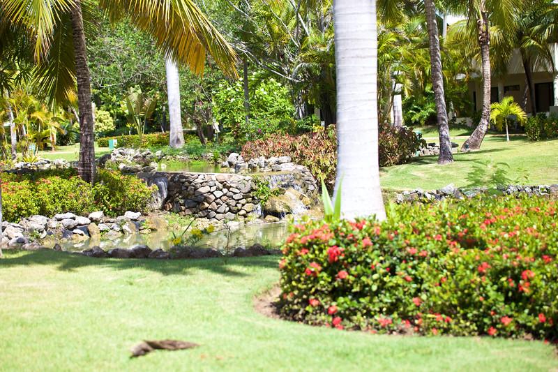 Punta Cana  2014-06-14 326.jpg