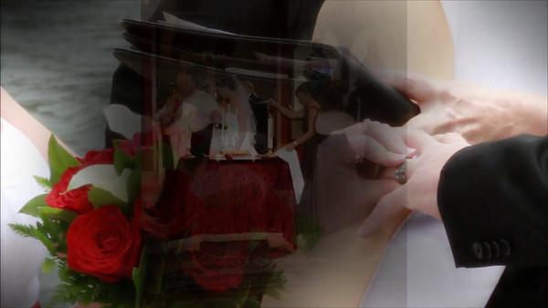 Wedding Sample Video