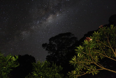 The Southern Sky - Milky Way Over Byron Bay