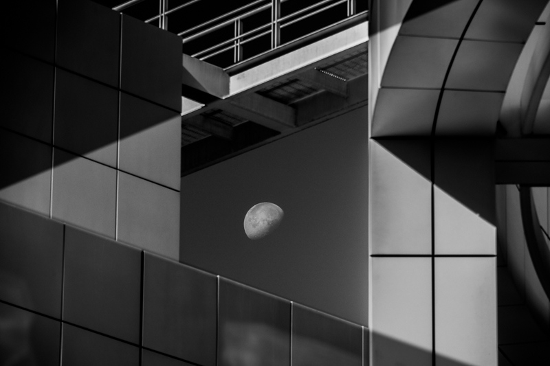November 8 - Cloistered moon, the Getty, Los Angeles.jpg