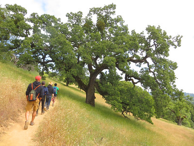 Henry Coe State Park: May 25-28, 2018