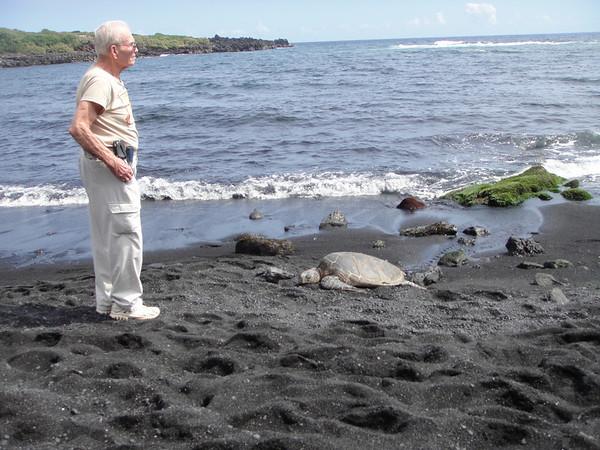 Big Isl Robertson Black sand beach