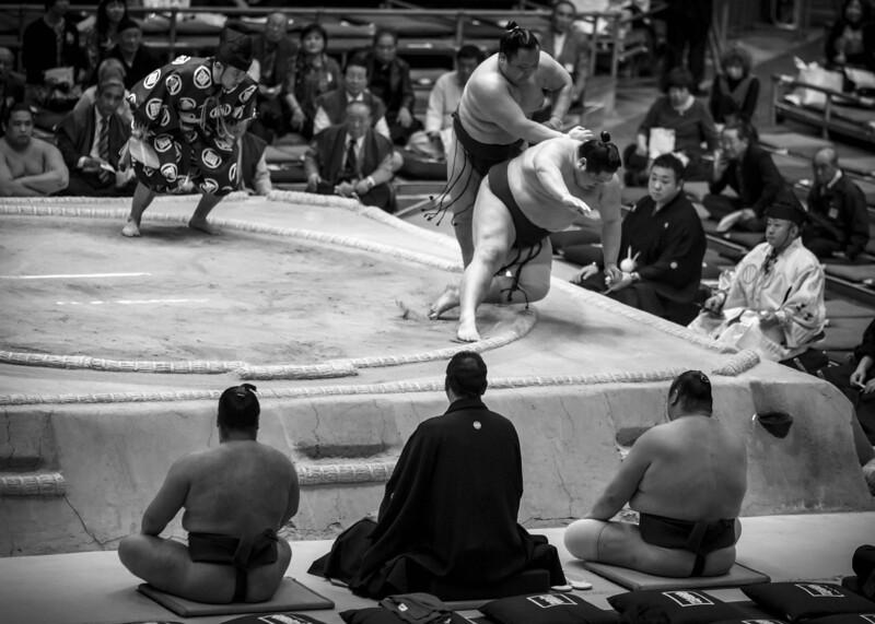 Osaka Sumo 220313 35 .jpg