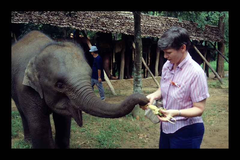 Bananas! - Thailand -1989.jpg