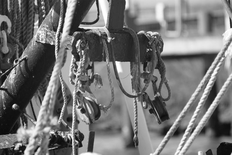Campaign, Shrimp Boat 085.jpg