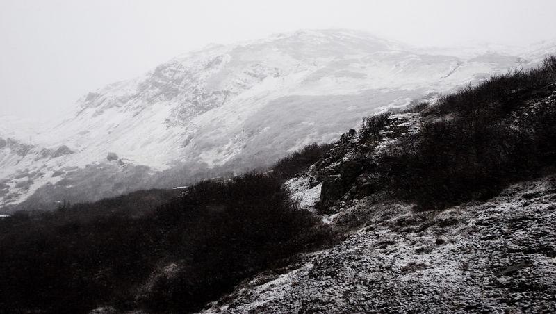 Arnarfjordur 2006