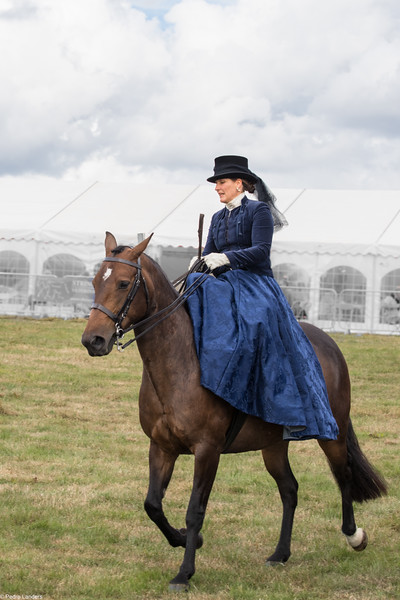 Side Saddle 2.jpg