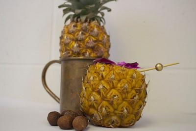 Mini Pineapple Photoshoot