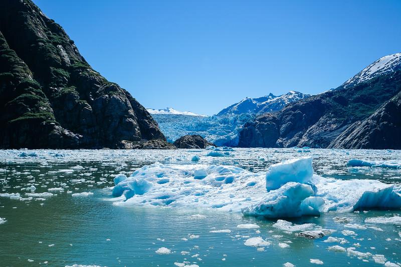 Alaska Cruise-0770.jpg