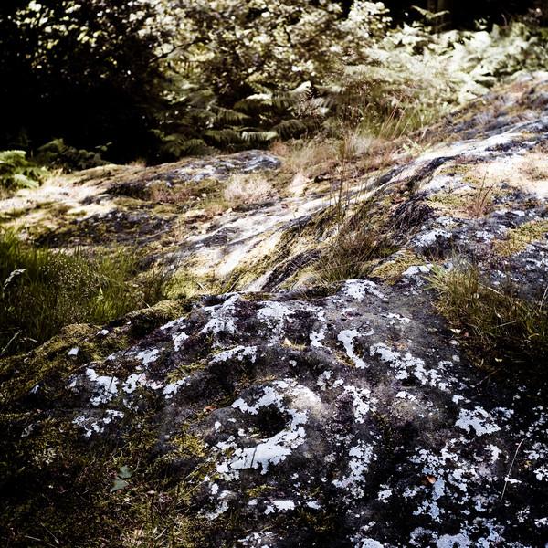 NE-summer-2007-1144-Edit.jpg