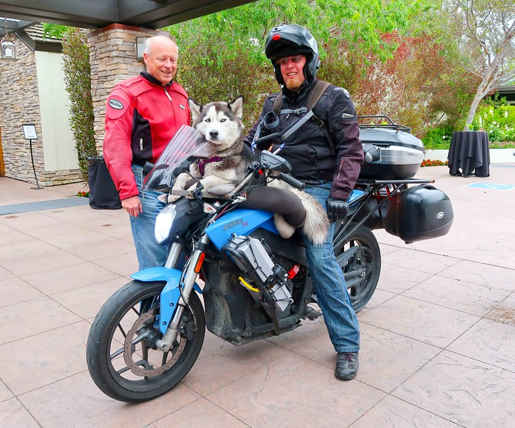 Quail Motorcycle Gathering - Zero with Husky.jpg