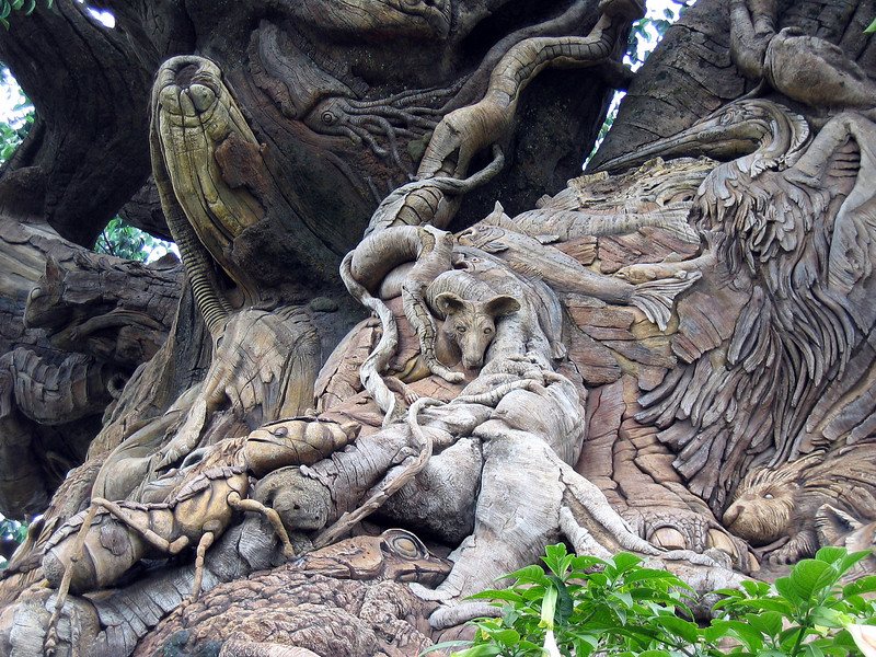 Base of the Tree of Life   (Apr 23, 2005, 01:17pm)