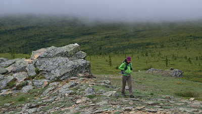 Rainy day hike on Murphy Dome and Wickersham Dome   2014-07-25