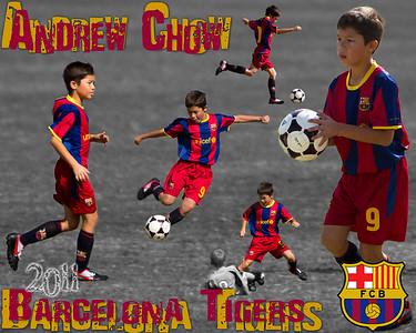 CYSA U9 Barcelona Tigers