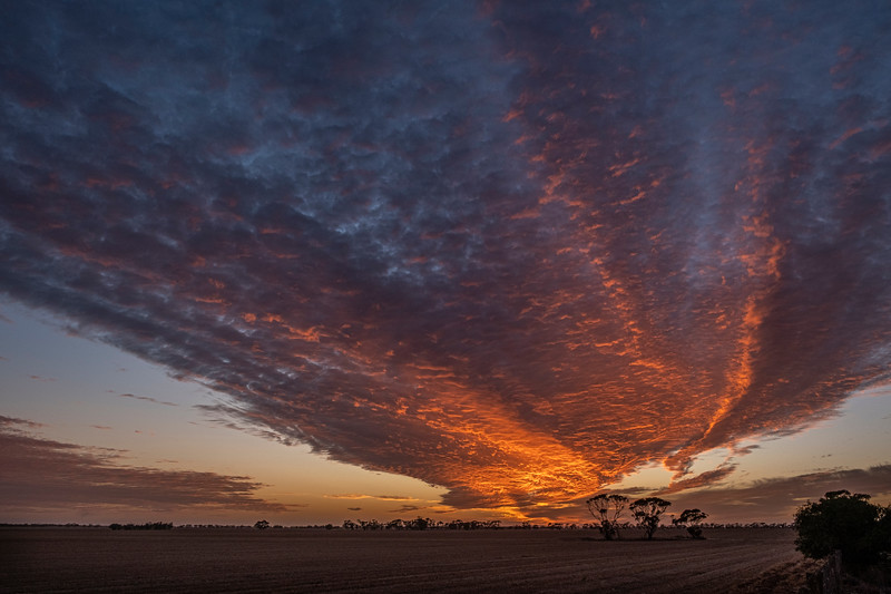 Sunrise near Sea lake, Victoria, Mallee Project