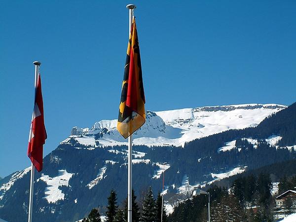 Grindelwald Flags.jpg