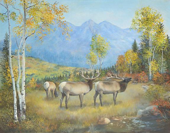 Beth Andersen Paintings
