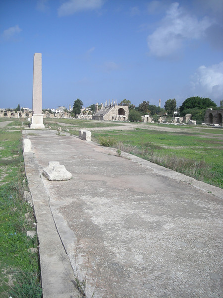 In Tyre (Sour) the Al-Bass archeological site is part of a number of extensive Roman ruims that are recognized as a World Heritage site
