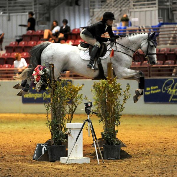 Horse show (37).jpg