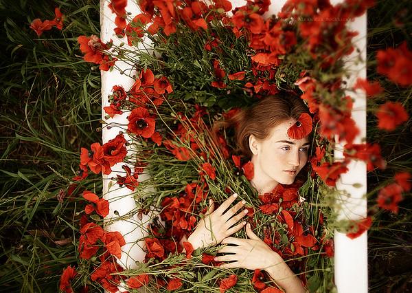 Florarium