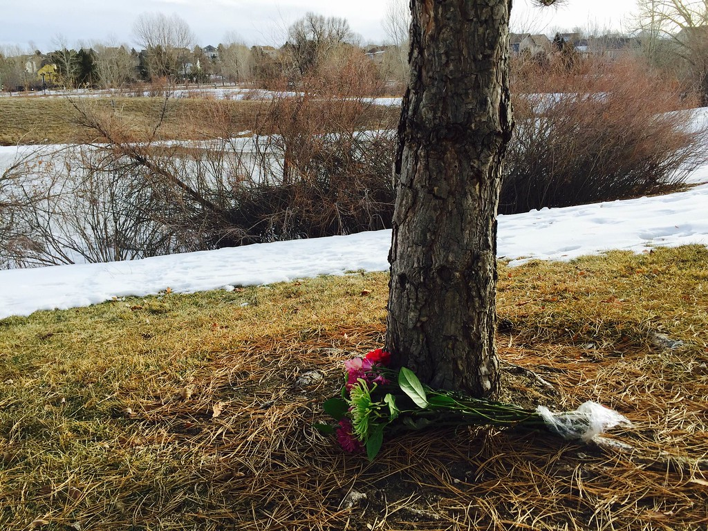 . Fresh flowers rest against a tree Friday, January 15, 2016 near the pond in the background where three boys fell through ice Thursday evening. One teen died in the accident. (Photo by Kenneth D. Lyons/The Denver Post)