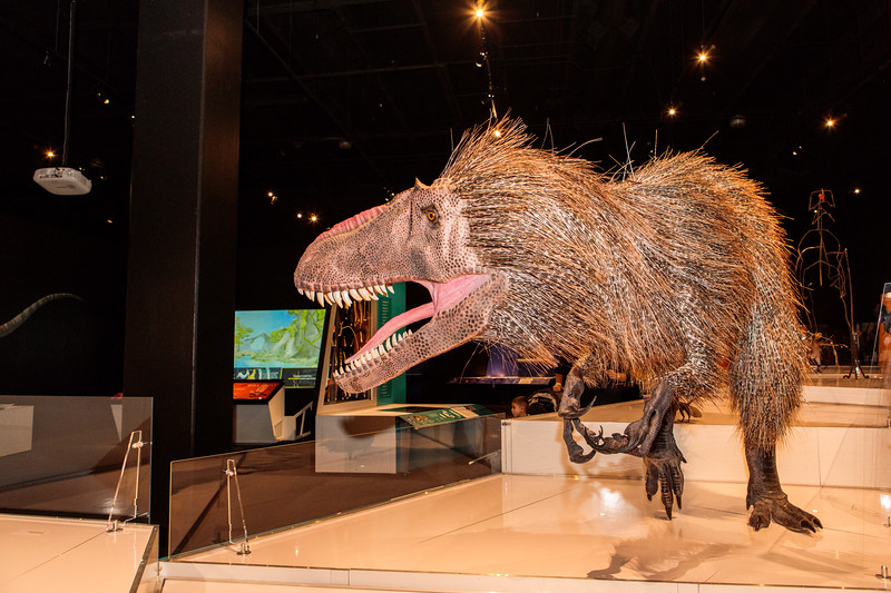 COSI-Dinosaurs-Exhibit-107.jpg