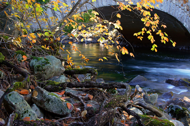 Merced River, Autumn Yosemite National Park California
