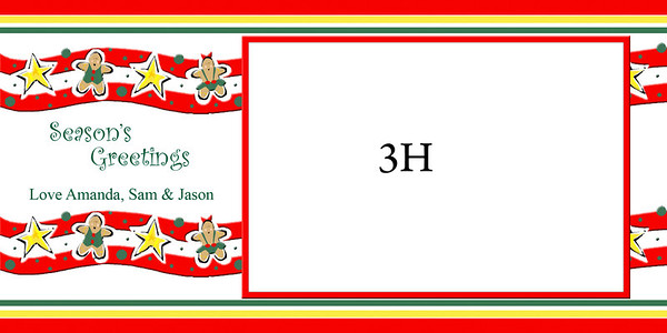 2012 Christmas cards 4x8