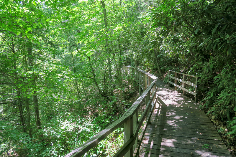 Andy Cove Nature Trail -- 2,240'