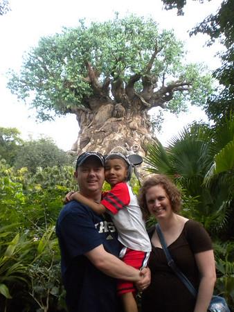 Disney World Vacation - 2012