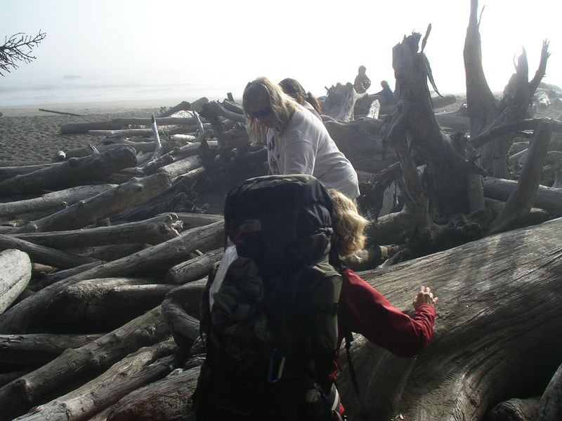 We have to make our way through the piles of wood on the beach.