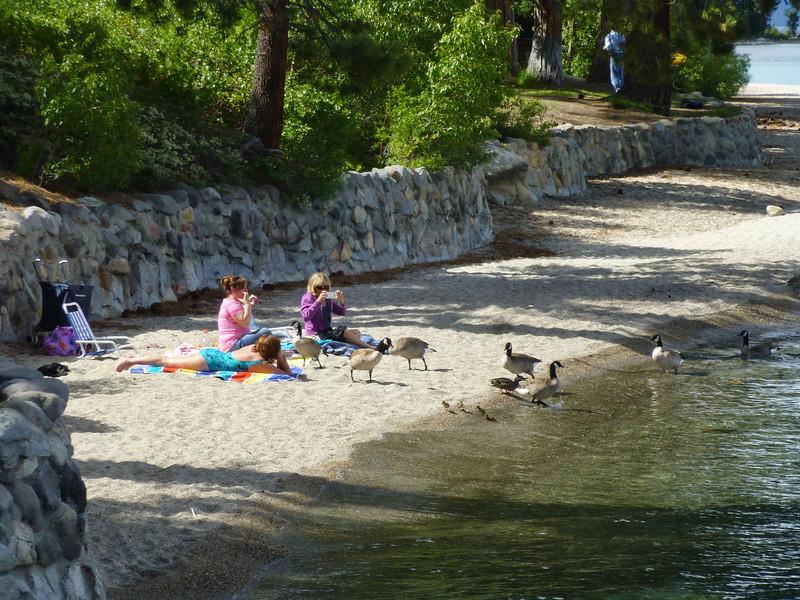 Lake Tahoe2013 Sugar Pine Pt 16.JPG