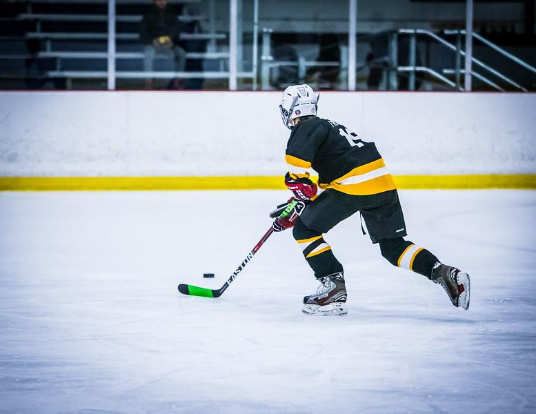 Bruins2-231.jpg