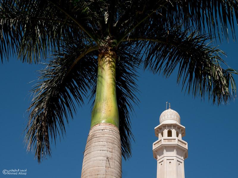 P1099467Dhofat-Sultan Qaboos Mosque-Salalah.jpg