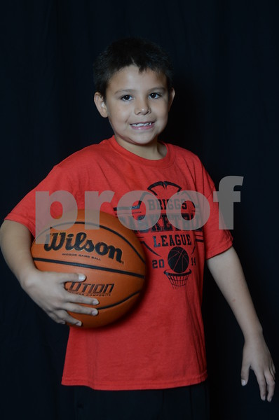 BRIGGS BASKETBALL 2014