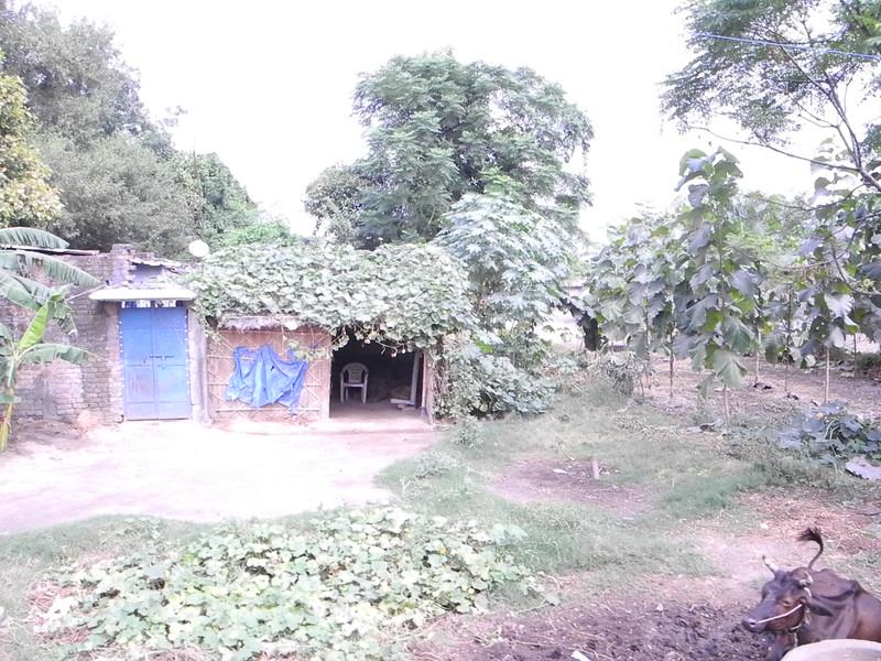 india&nepal2011 265.jpg