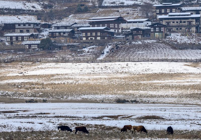 Gangtey-Village-Phobjika-Bhutan.jpg