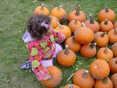 Pumpkin Farm 2005