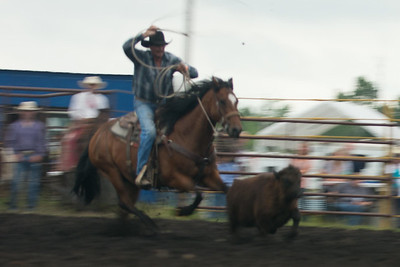 Roping Friday 2014