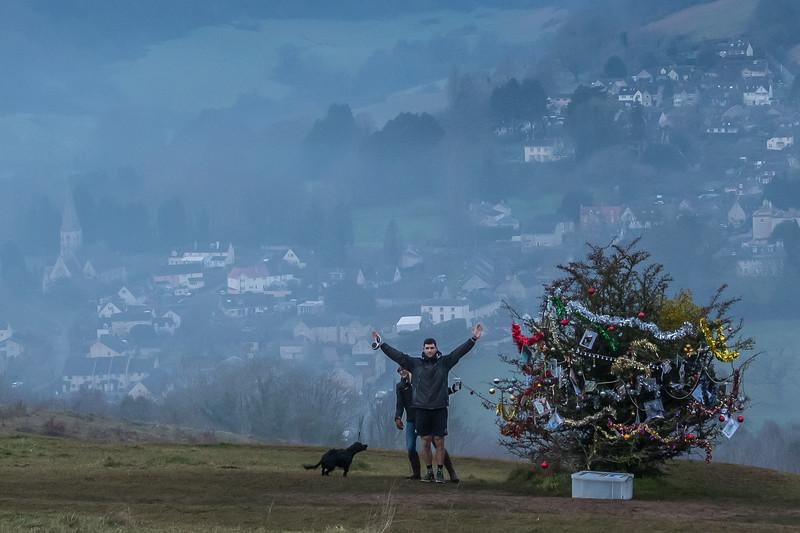 Dog's Christmas Tree-7592.jpg