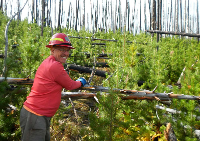 Montana: Restoring and Maintaining Trails in Bob Marshall Wilderness Complex