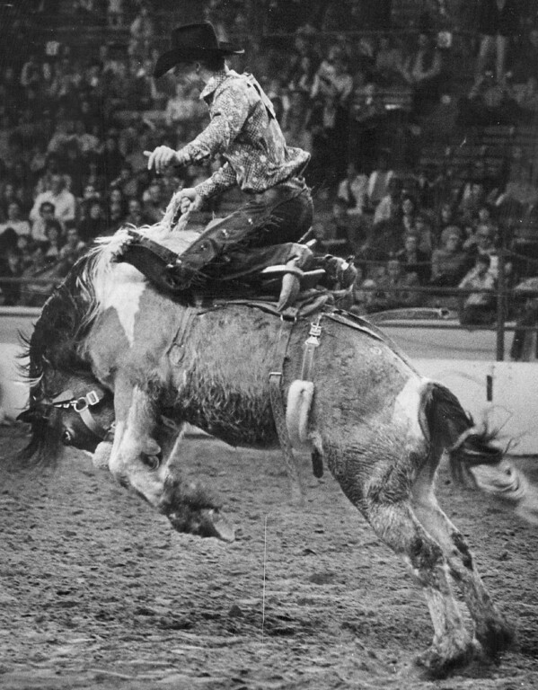 . Badgett Stays in the saddle during Bronc riding finals Competition. He wasn\'t disappointed or overwhelmed with his earnings of $3,977. 1974. John Sunderland, The Denver Post